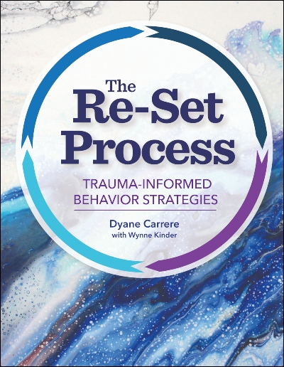 cover image of The Re-Set Process